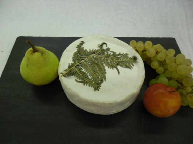 Fougérus
